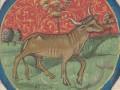 Талисманы-обереги для людей, родившихся под покровительством Быка -нюансы